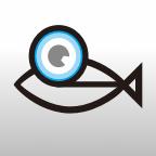 斑马鱼爱眼