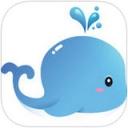 蓝鲸TMT