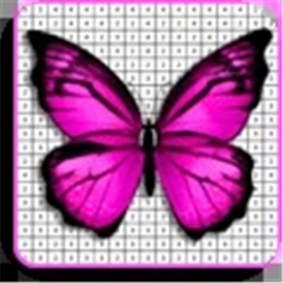 蝴蝶图画书
