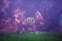 DNF嘉年华上再放重弹:BBQ计划公开最新视频